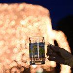 Festa e Birres ne Korce