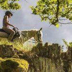 Turi me kuaj ne Gjirokaster