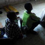 Trafikimi i fëmijëve në BE/ Mbi 5 mijë nga Shqipëria
