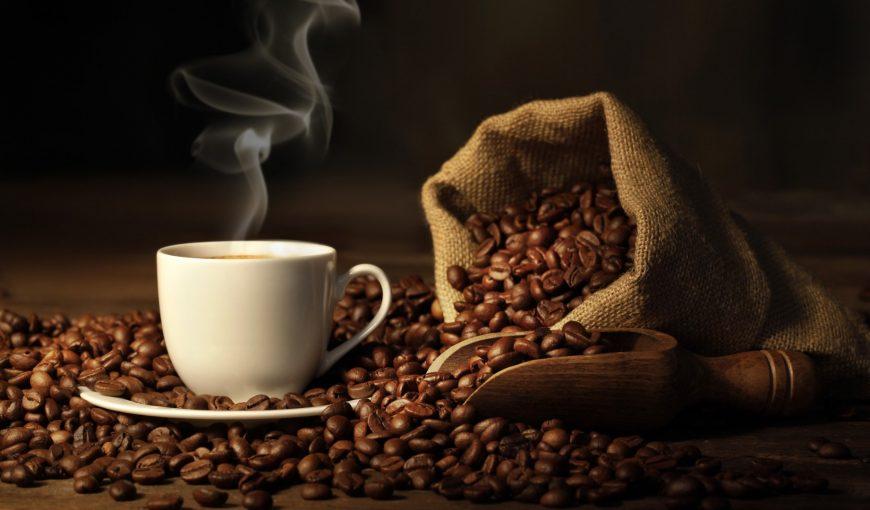fakte rreth kafese-konica.al
