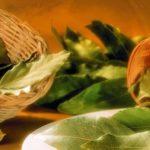 Gjethet e thata të dafinës, mrekullia për një sërë sëmundjesh