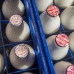 Çfarë bëjmë me qumështin e prodhuar?